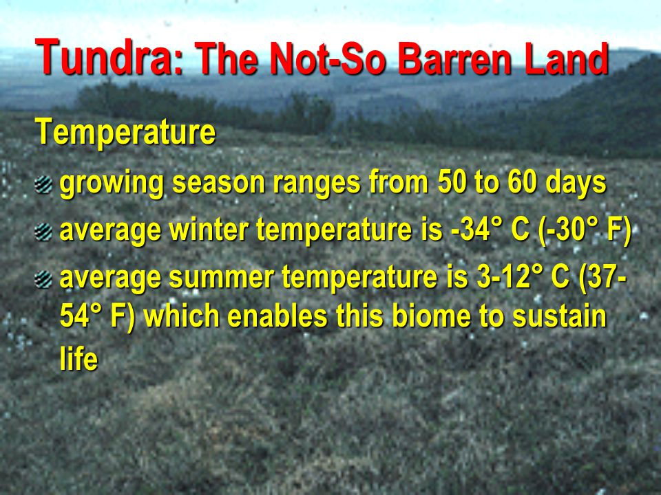 Tundra : The Not-So Barren Land Precipitation may vary in different regions of the arctic yearly precipitation, including melting snow, is 15 to 25 cm (6 to 10 inches)