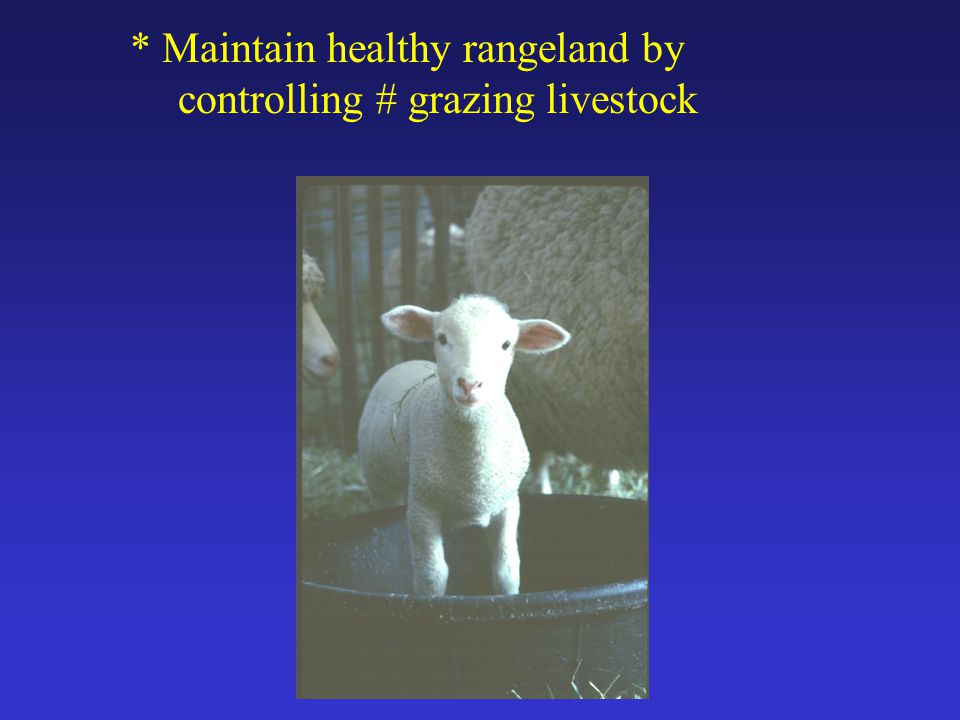 * Maintain healthy rangeland by controlling # grazing livestock