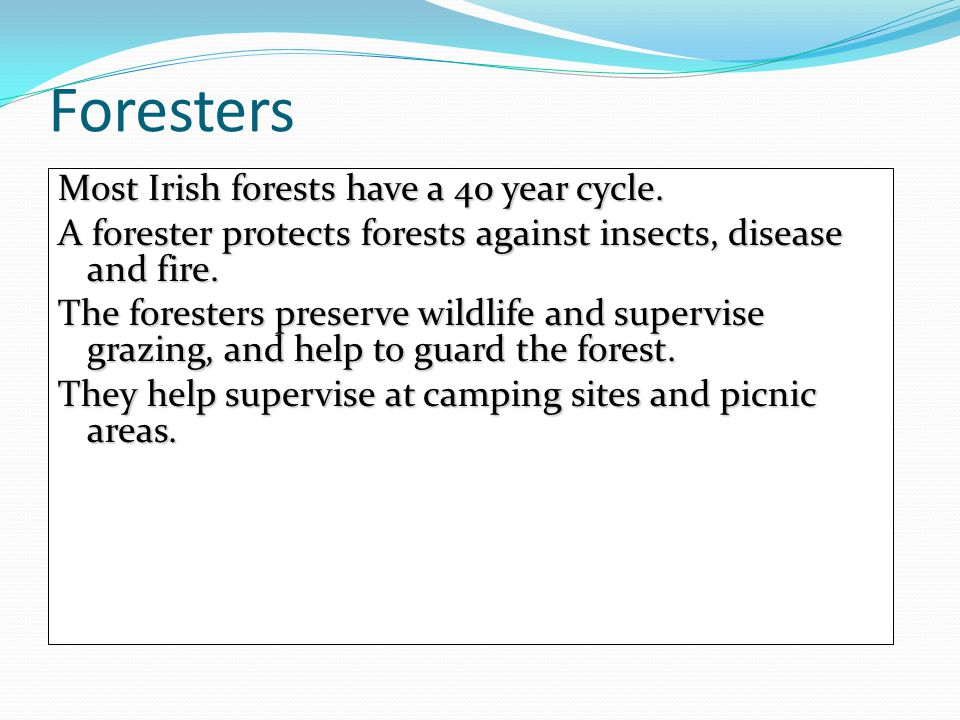 Foresters Most Irish forests have a 40 year cycle.