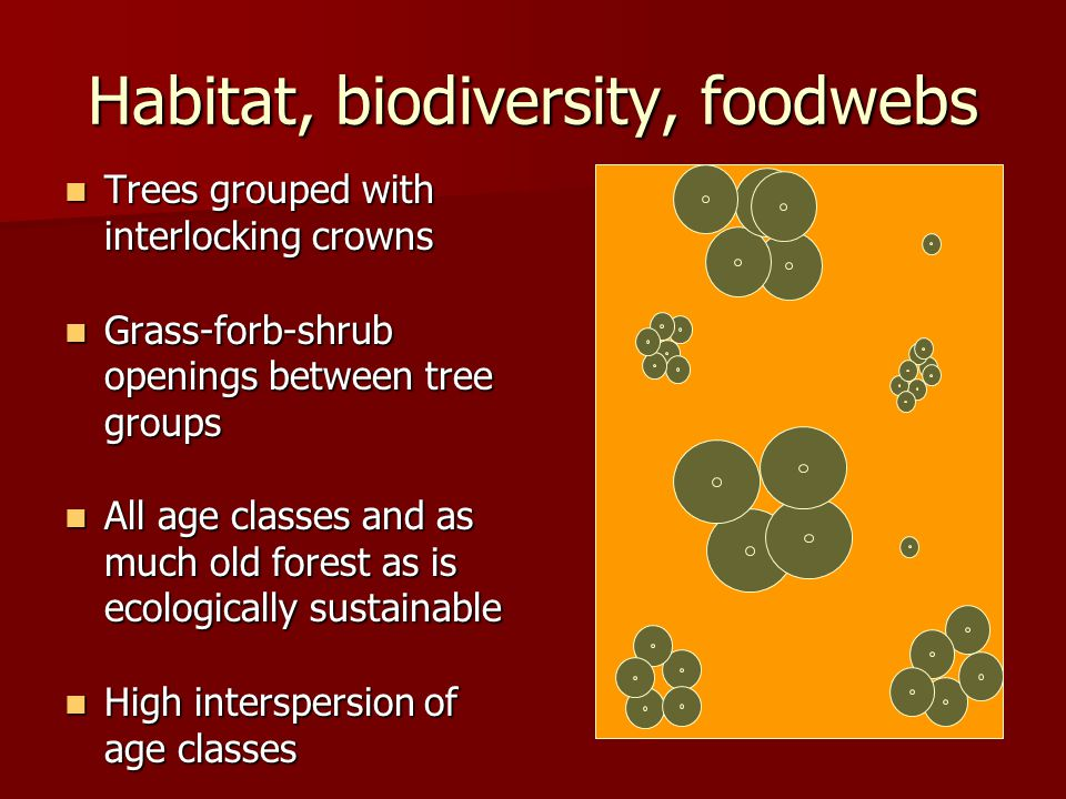 Habitat, biodiversity, foodwebs Trees grouped with interlocking crowns Trees grouped with interlocking crowns Grass-forb-shrub openings between tree groups Grass-forb-shrub openings between tree groups All age classes and as much old forest as is ecologically sustainable All age classes and as much old forest as is ecologically sustainable High interspersion of age classes High interspersion of age classes