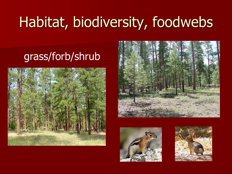 Habitat, biodiversity, foodwebs grass/forb/shrub