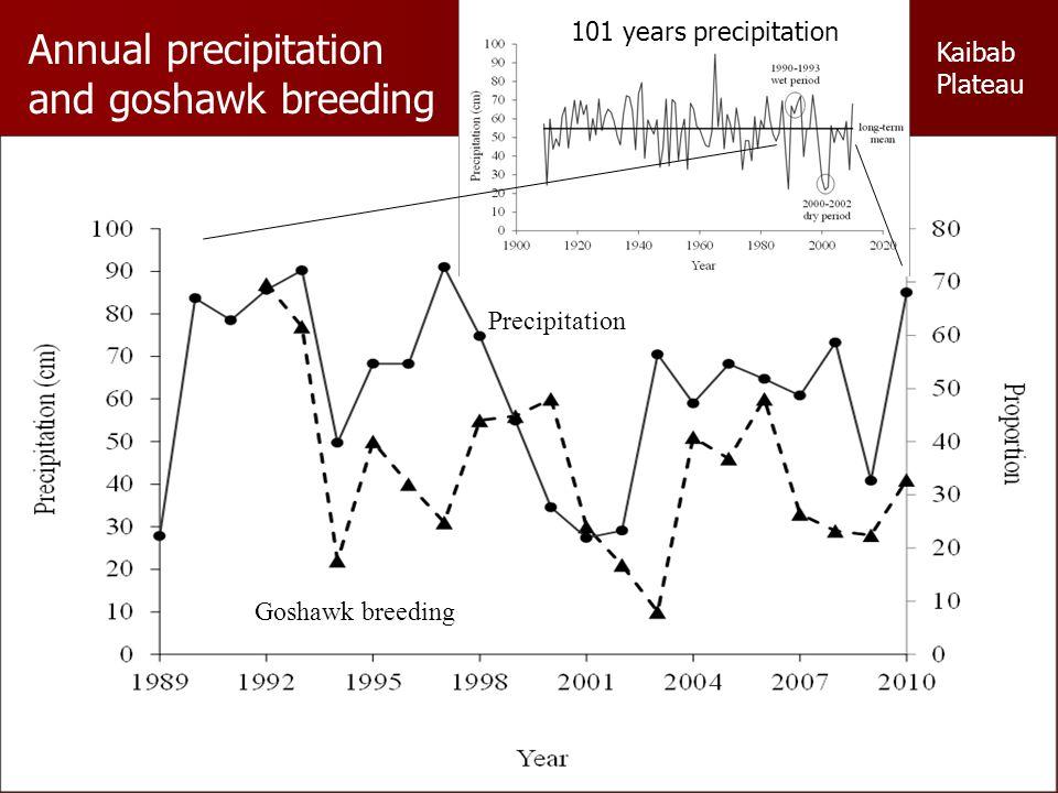 Precipitation Goshawk breeding Annual precipitation and goshawk breeding 101 years precipitation Kaibab Plateau