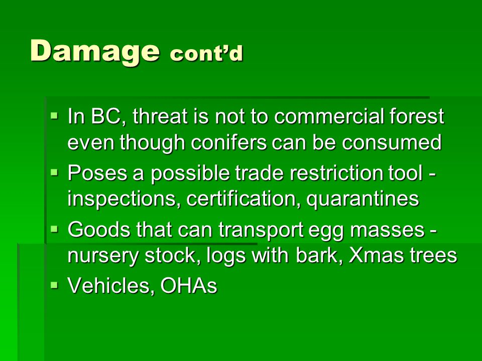 Damage cont'd  In BC, threat is not to commercial forest even though conifers can be consumed  Poses a possible trade restriction tool - inspections, certification, quarantines  Goods that can transport egg masses - nursery stock, logs with bark, Xmas trees  Vehicles, OHAs