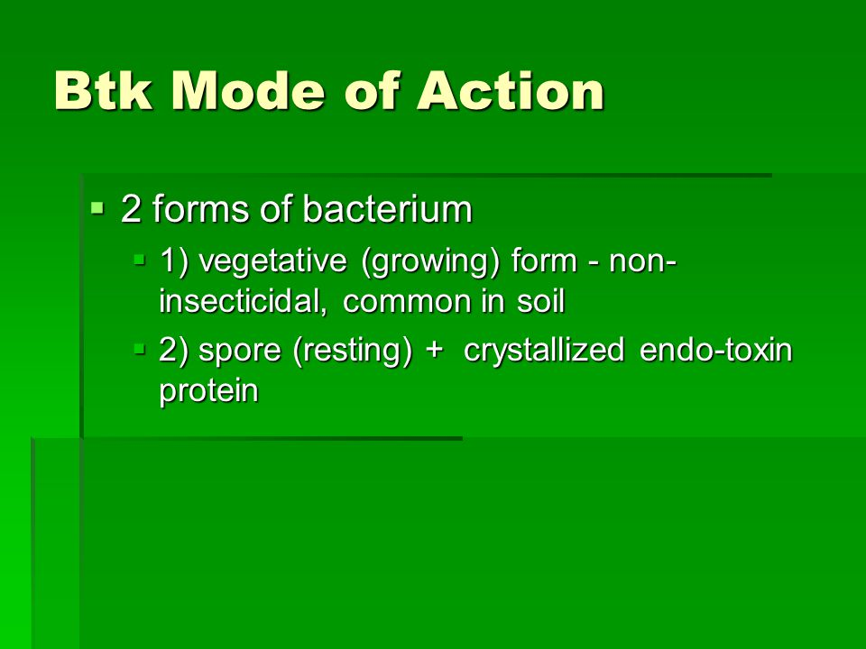 Btk Mode of Action  2 forms of bacterium  1) vegetative (growing) form - non- insecticidal, common in soil  2) spore (resting) + crystallized endo-toxin protein