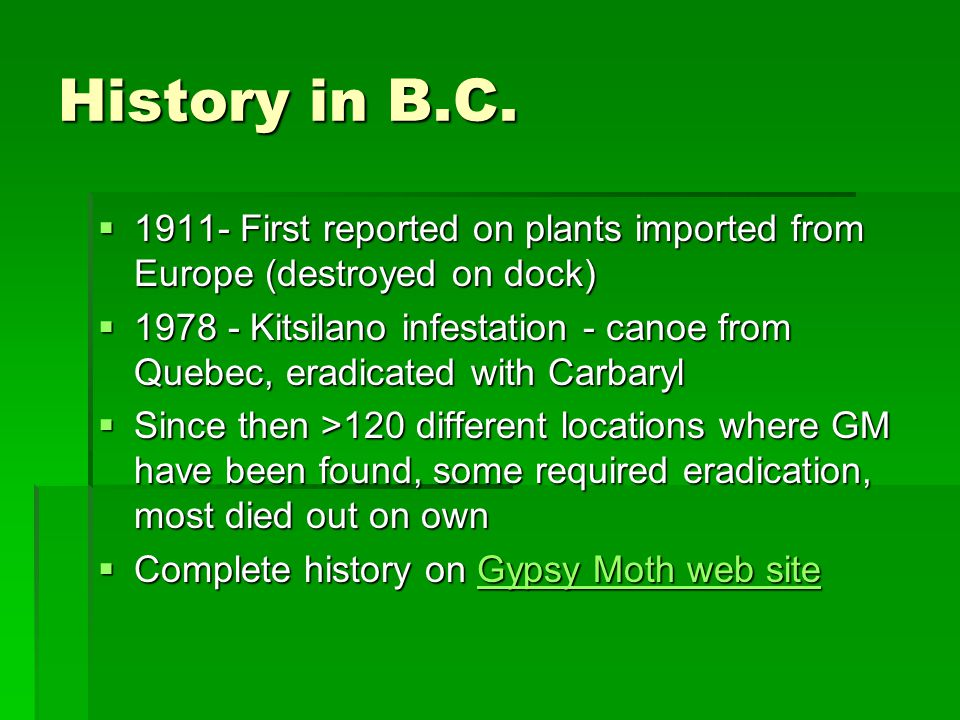 History in B.C.  1911- First reported on plants imported from Europe (destroyed on dock)  1978 - Kitsilano infestation - canoe from Quebec, eradicat