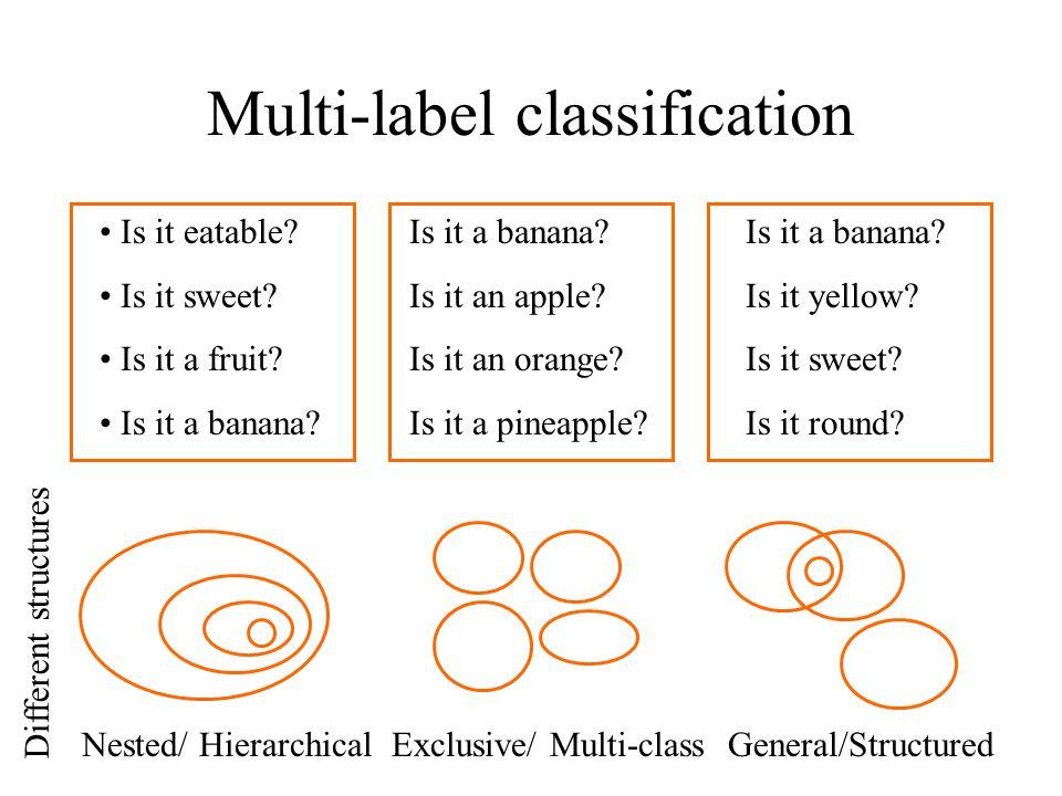 Multi-label classification Is it eatable? Is it sweet? Is it a fruit? Is it a banana? Is it an apple? Is it an orange? Is it a pineapple? Is it a bana