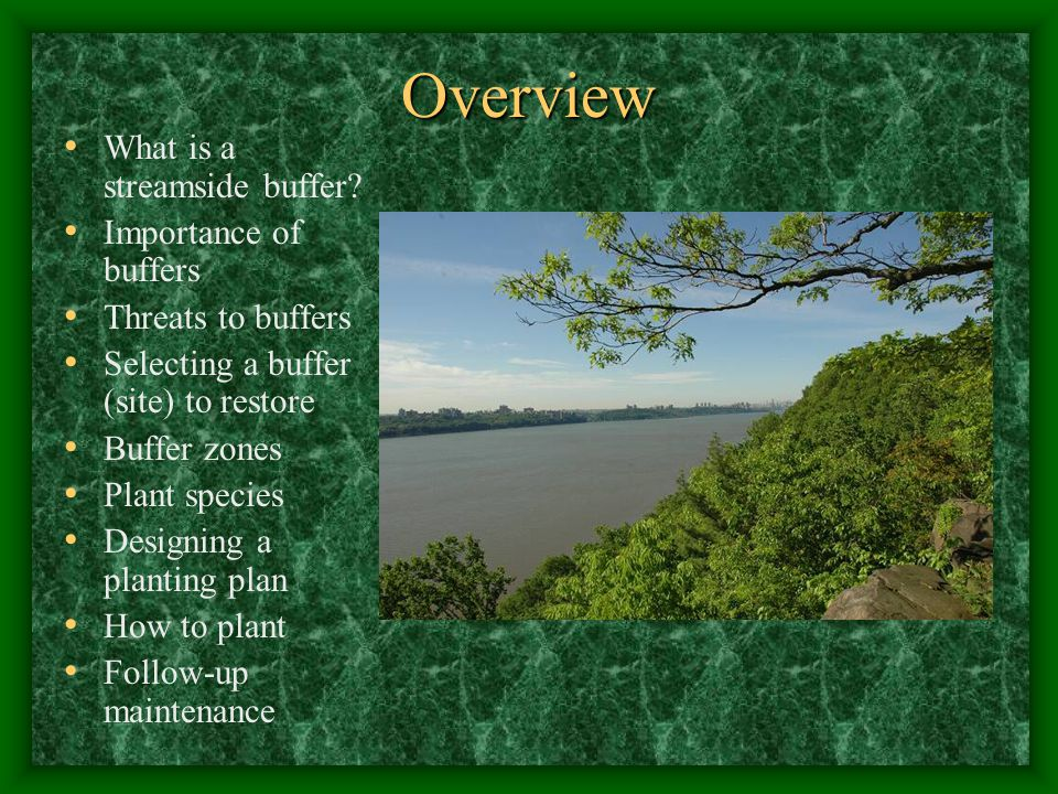 Overview What is a streamside buffer.