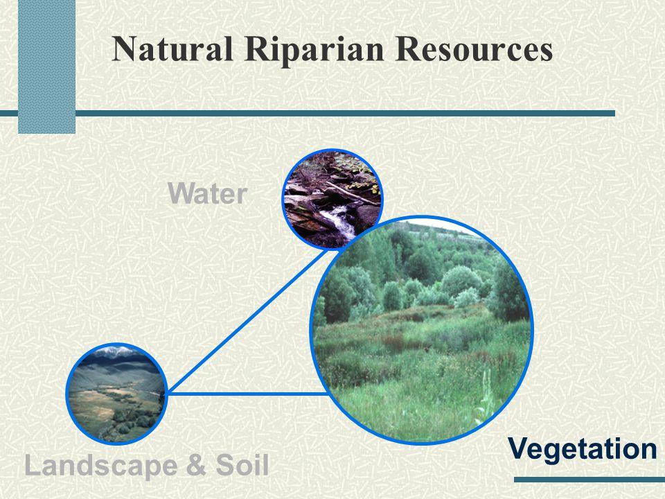 Natural Riparian Resources Landscape & Soil Water Vegetation