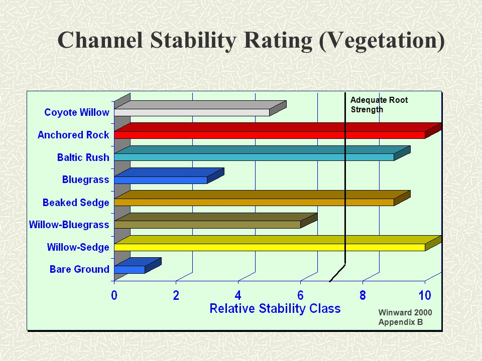 Channel Stability Rating (Vegetation) Winward 2000 Appendix B Adequate Root Strength