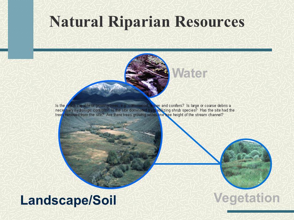 Natural Riparian Resources Vegetation Landscape/Soil Water
