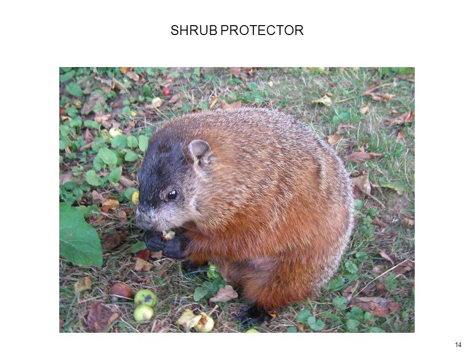 14 SHRUB PROTECTOR