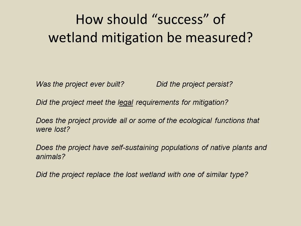 How should success of wetland mitigation be measured.