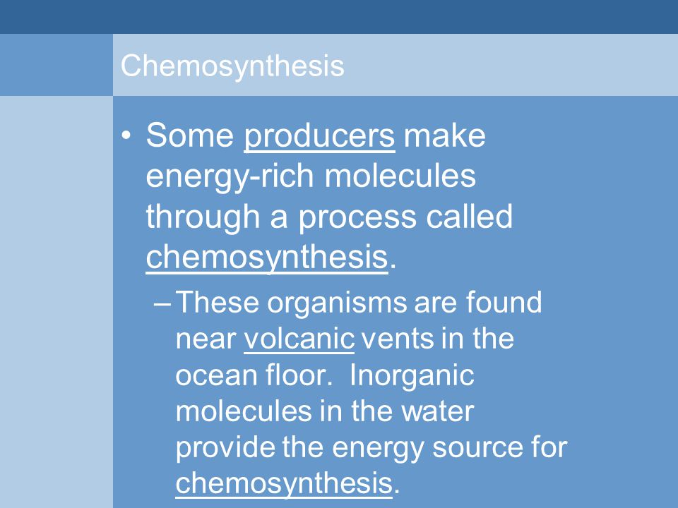 Chemosynthesis Some producers make energy-rich molecules through a process called chemosynthesis. –These organisms are found near volcanic vents in th