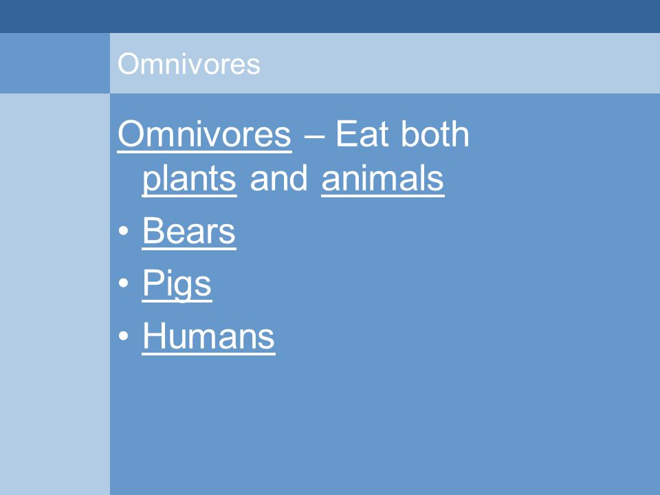 Omnivores Omnivores – Eat both plants and animals Bears Pigs Humans