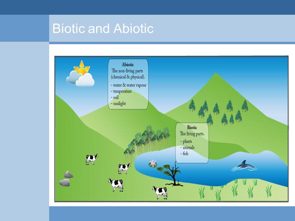 Biotic and Abiotic