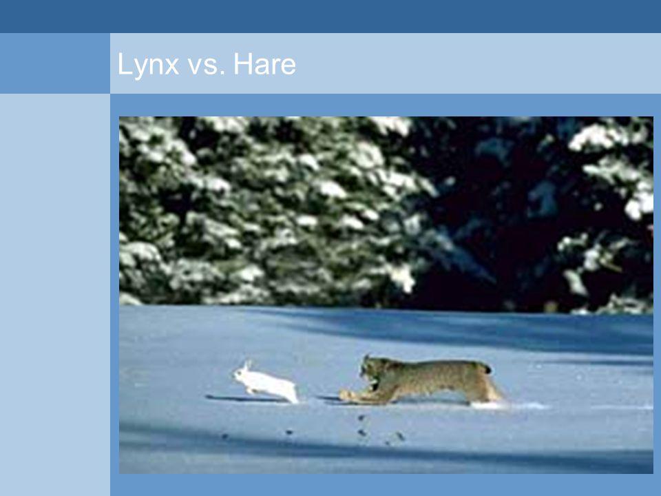 Lynx vs. Hare