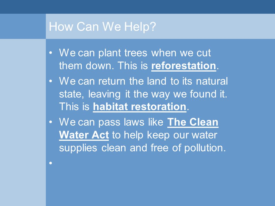 How Can We Help? We can plant trees when we cut them down. This is reforestation. We can return the land to its natural state, leaving it the way we f