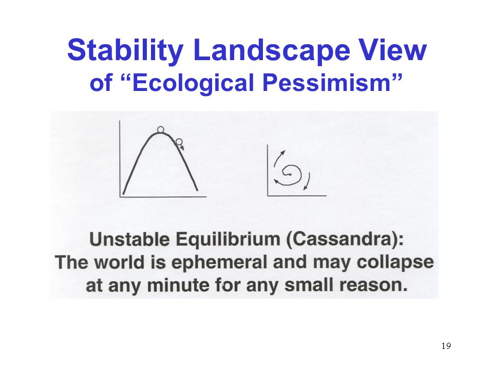 19 Stability Landscape View of Ecological Pessimism