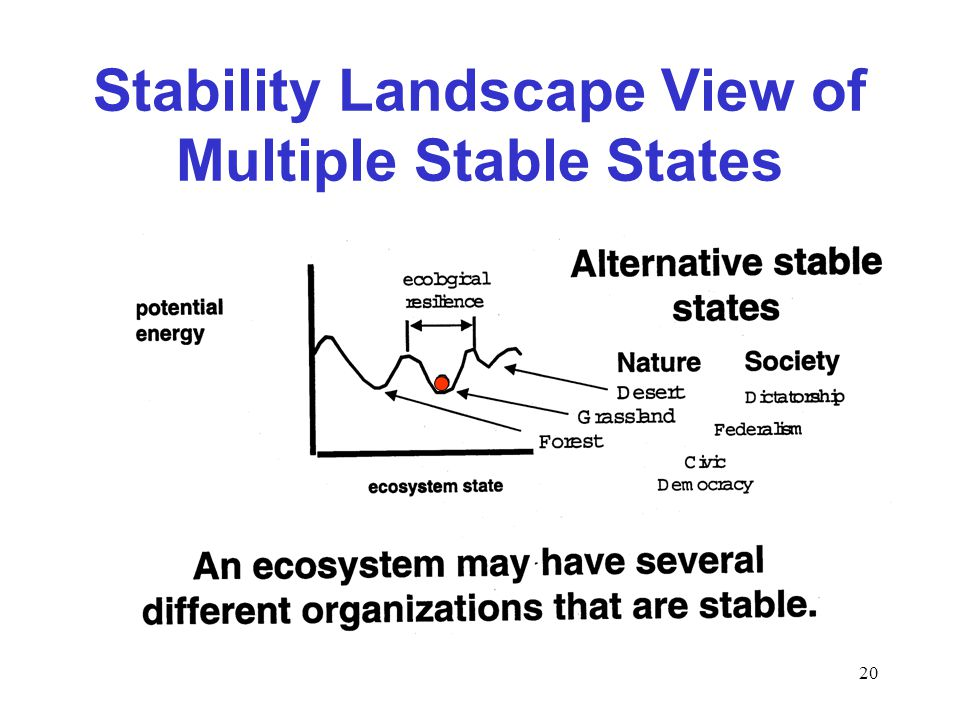 20 Stability Landscape View of Multiple Stable States