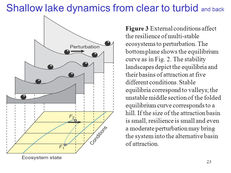 23 Figure 3 External conditions affect the resilience of multi-stable ecosystems to perturbation.