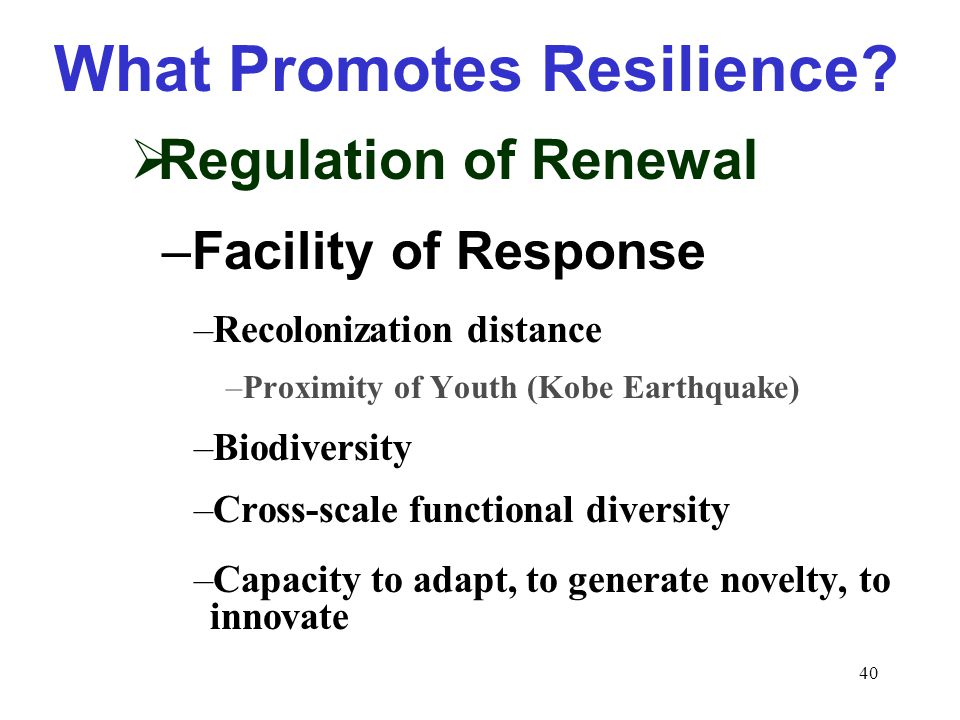 40 What Promotes Resilience.