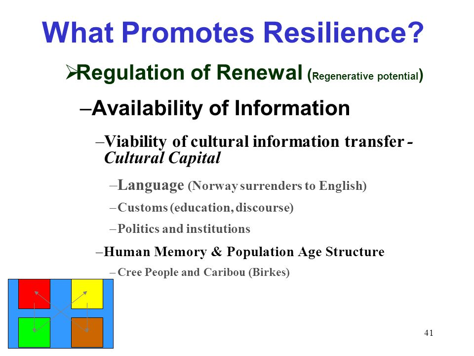 41 What Promotes Resilience.