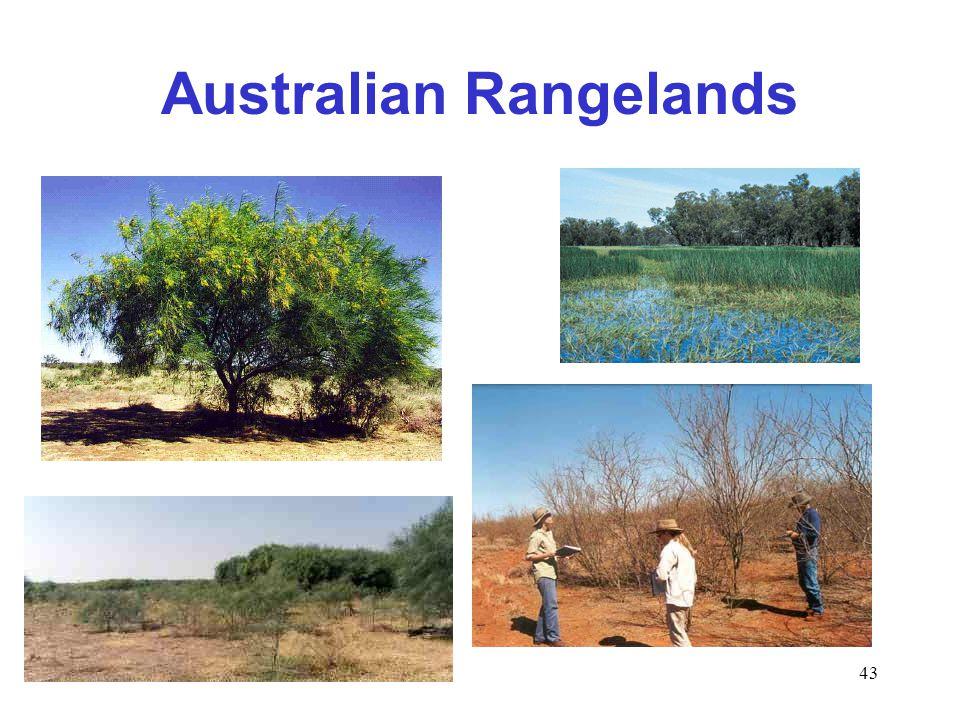 43 Australian Rangelands