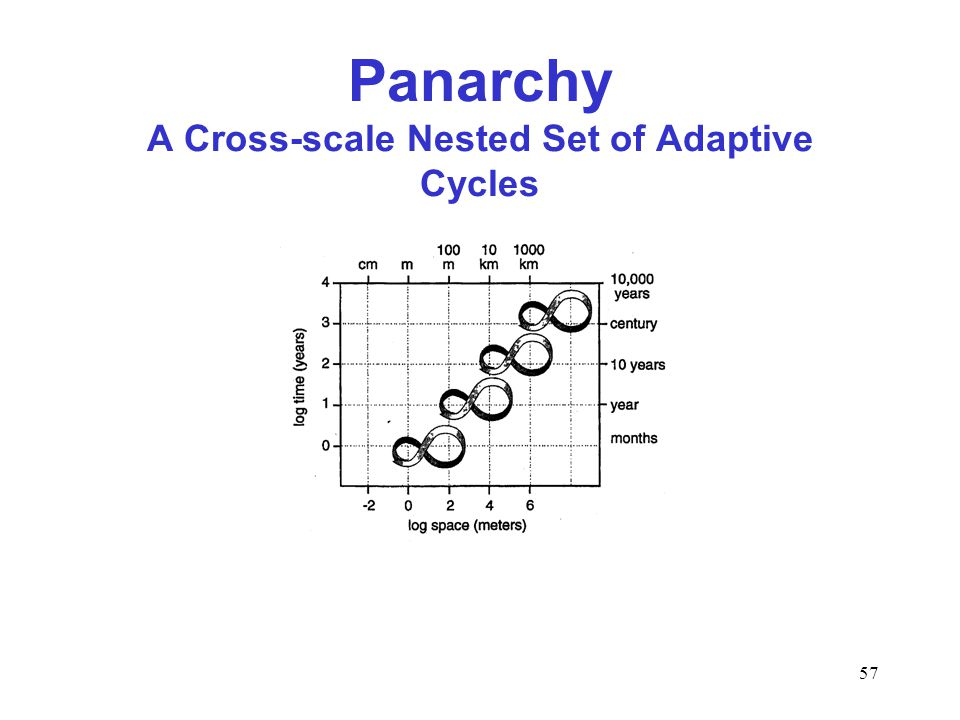 57 Panarchy A Cross-scale Nested Set of Adaptive Cycles