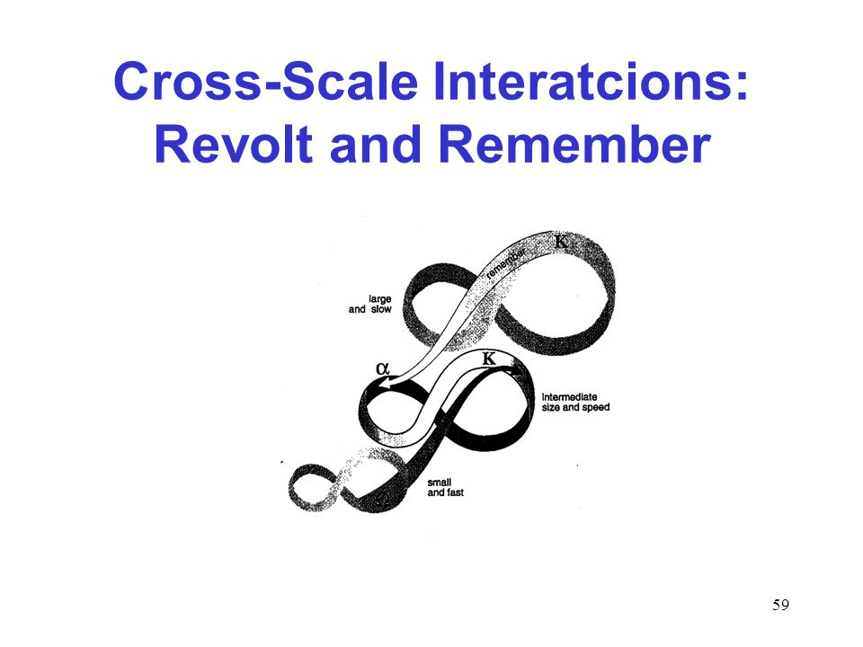 59 Cross-Scale Interatcions: Revolt and Remember