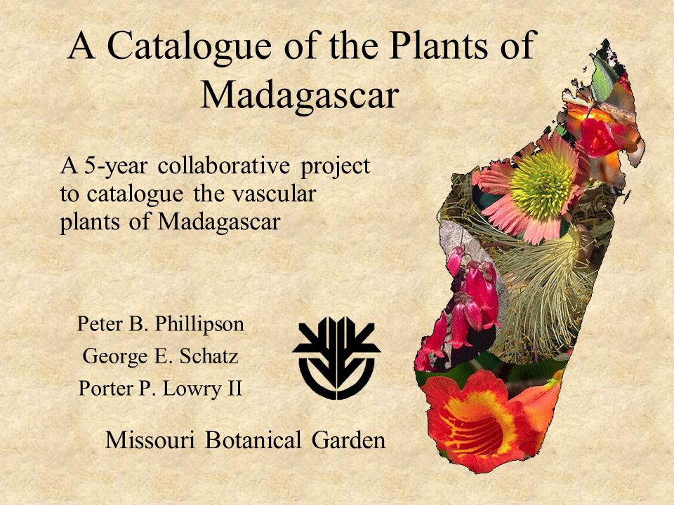 A Catalogue of the Plants of Madagascar Peter B. Phillipson George E.