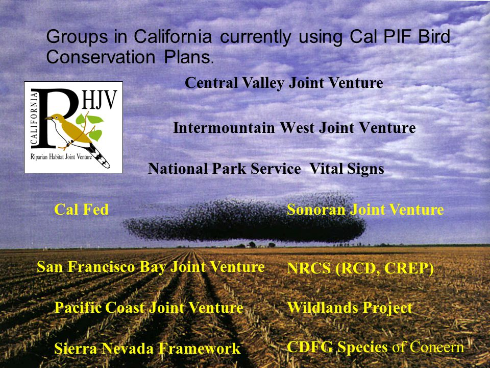 Groups in California currently using Cal PIF Bird Conservation Plans.