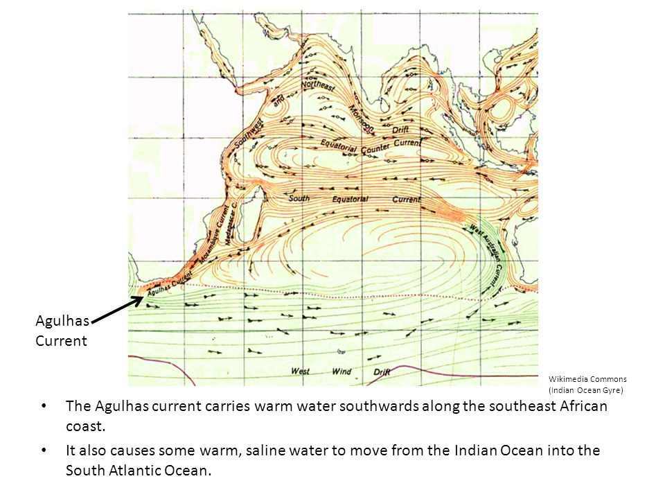 The Agulhas current carries warm water southwards along the southeast African coast. It also causes some warm, saline water to move from the Indian Oc