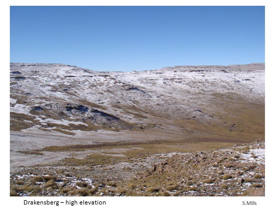 Drakensberg – high elevation S.Mills