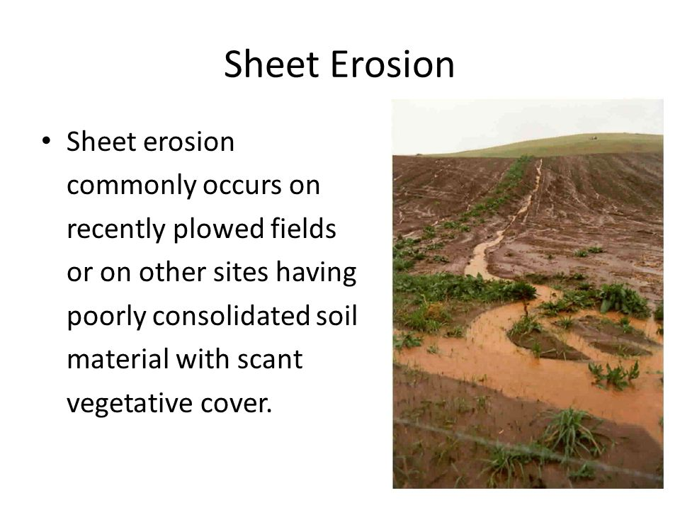 Sheet Erosion Sheet erosion commonly occurs on recently plowed fields or on other sites having poorly consolidated soil material with scant vegetative