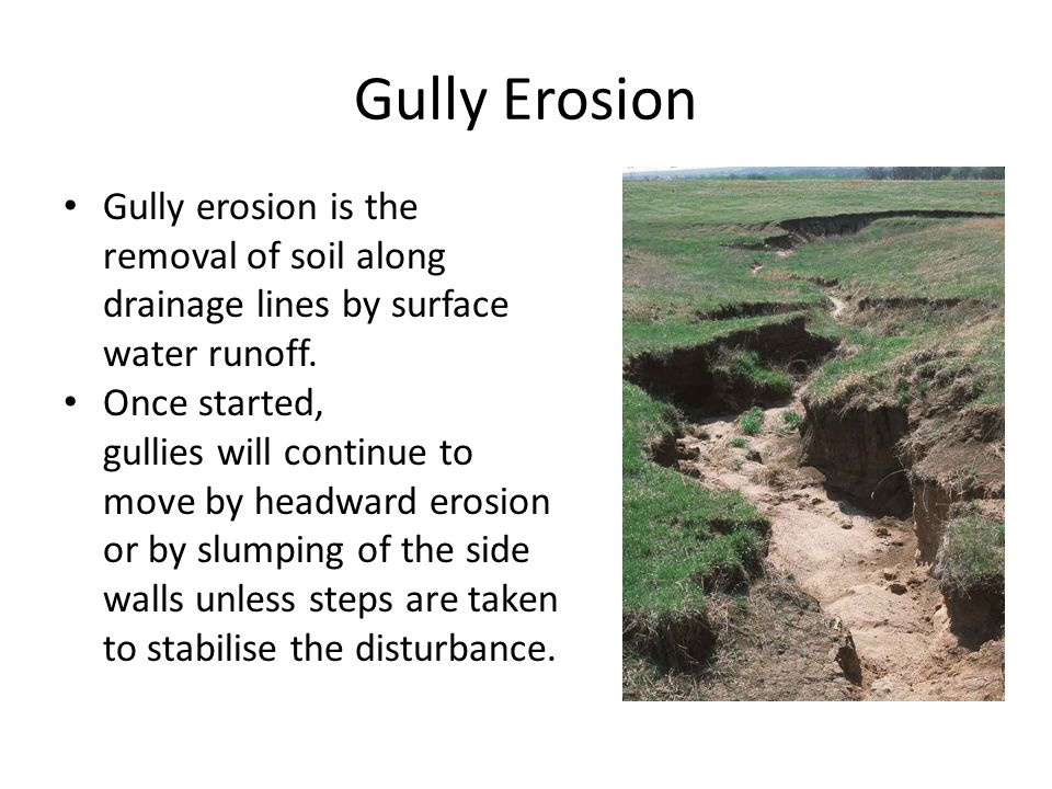 Gully Erosion Gully erosion is the removal of soil along drainage lines by surface water runoff. Once started, gullies will continue to move by headwa