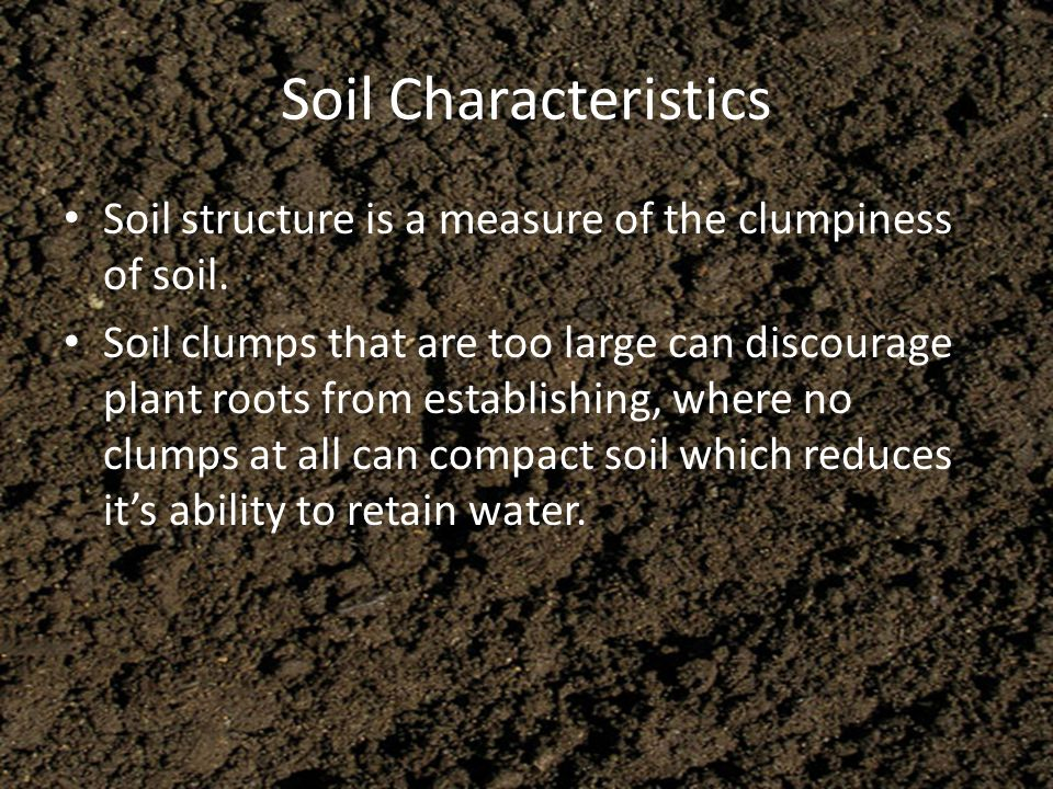 Soil Characteristics Soil structure is a measure of the clumpiness of soil. Soil clumps that are too large can discourage plant roots from establishin