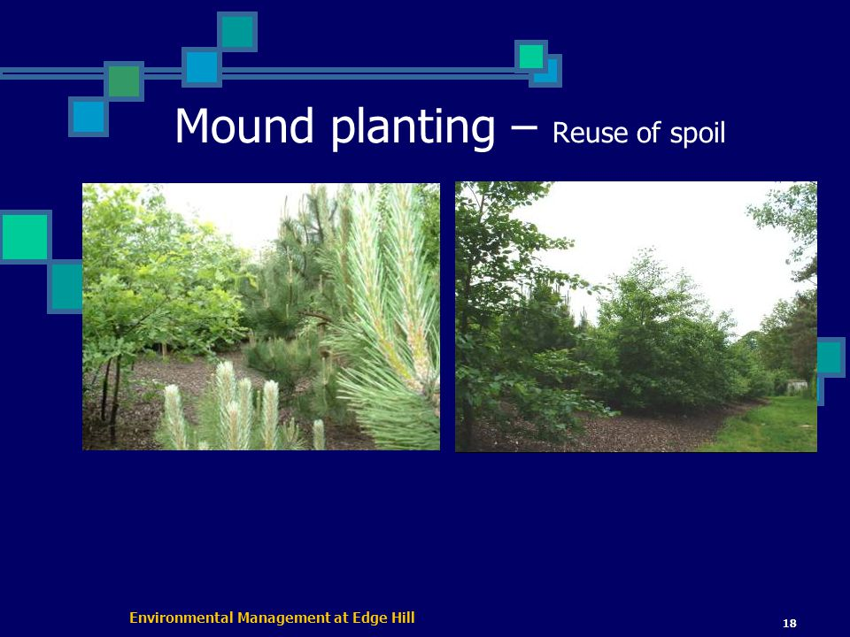 Environmental Management at Edge Hill 18 Mound planting – Reuse of spoil