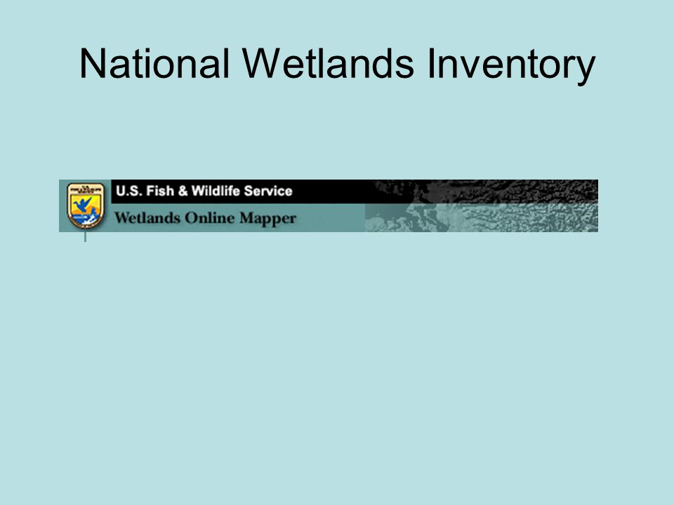 National Wetlands Inventory