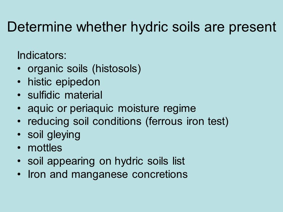 Determine whether hydric soils are present Indicators: organic soils (histosols) histic epipedon sulfidic material aquic or periaquic moisture regime reducing soil conditions (ferrous iron test) soil gleying mottles soil appearing on hydric soils list Iron and manganese concretions