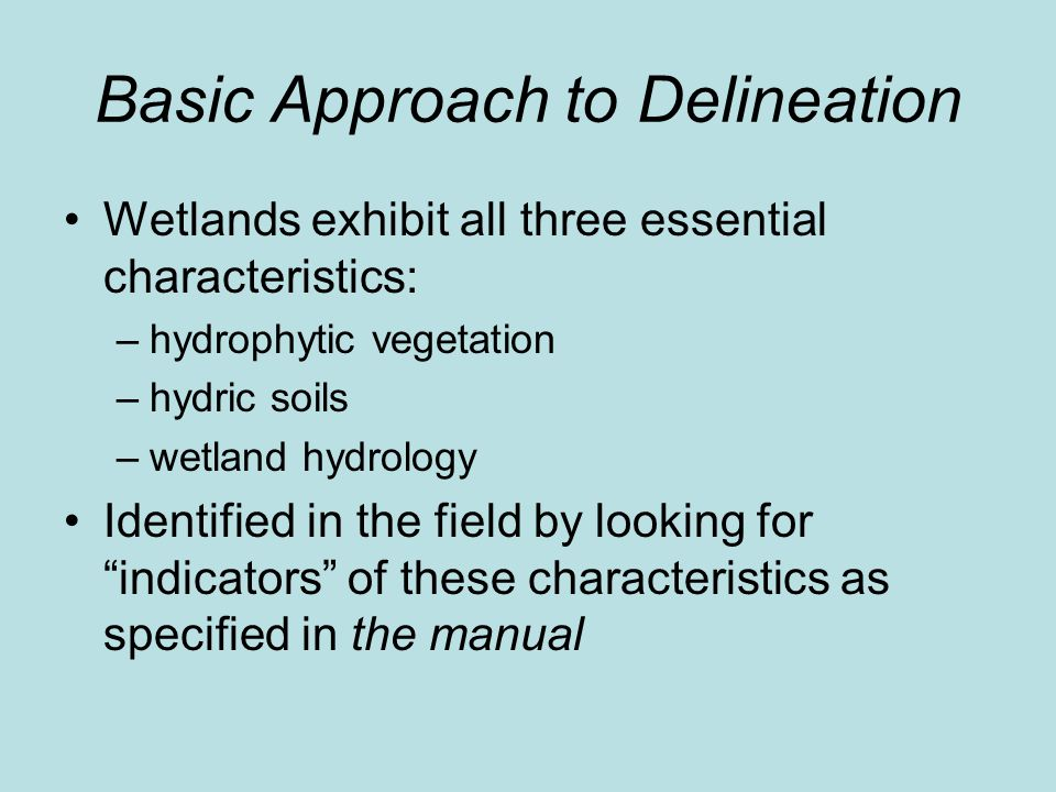 Basic Approach to Delineation Wetlands exhibit all three essential characteristics: –hydrophytic vegetation –hydric soils –wetland hydrology Identified in the field by looking for indicators of these characteristics as specified in the manual