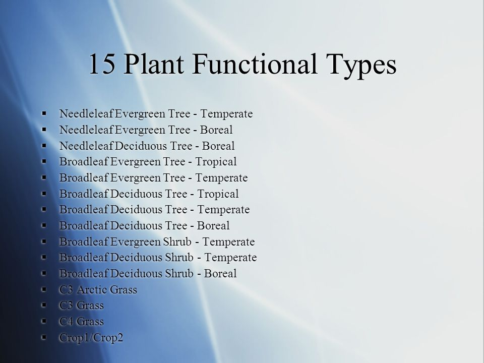 15 Plant Functional Types  Needleleaf Evergreen Tree - Temperate  Needleleaf Evergreen Tree - Boreal  Needleleaf Deciduous Tree - Boreal  Broadlea