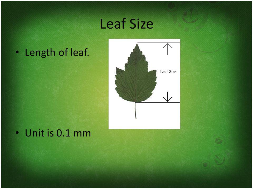 Leaf Size Length of leaf. Unit is 0.1 mm