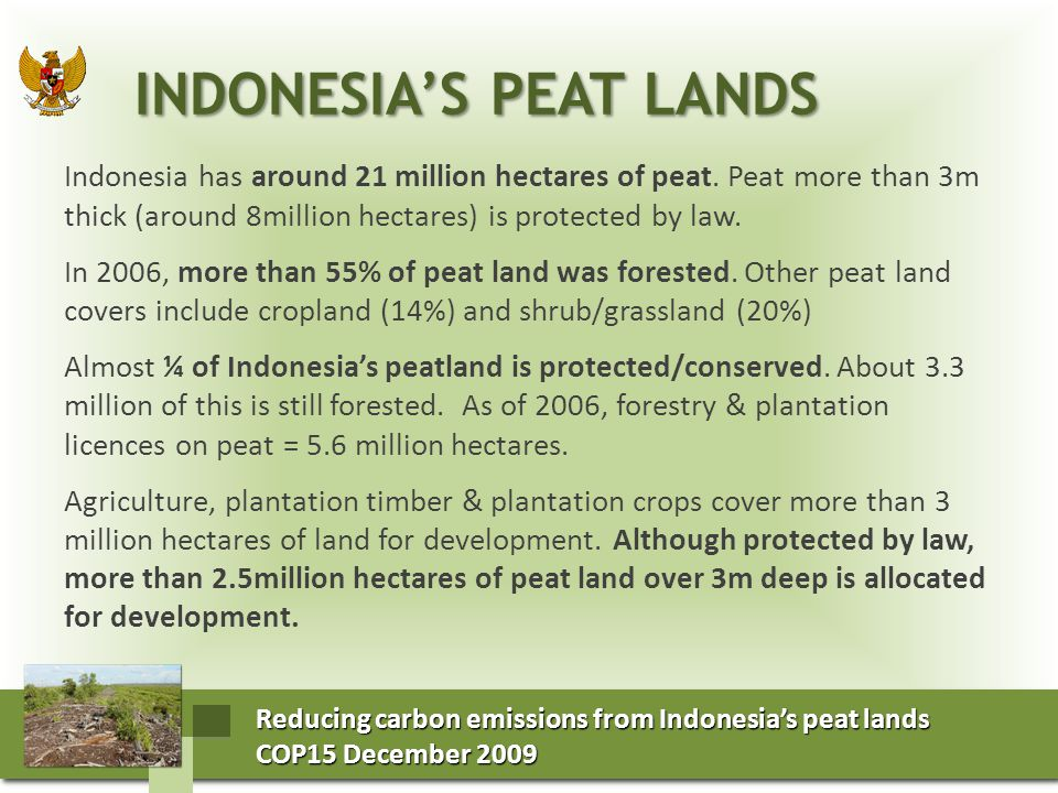 Reducing carbon emissions from Indonesia's peat lands COP15 December 2009 COP15 December 2009 Reducing carbon emissions from Indonesia's peat lands COP15 December 2009 COP15 December 2009 THE EMISSIONS OF PEAT LANDS THE EMISSIONS OF PEAT LANDS Indonesia has an average annual net emission of 903 Mt CO2 yr-1 between 2000 and 2006 This estimate is based on: Estimates of emissions from oxidation of 220 Mt CO2/yr using land use and land cover data from 2000-2006 and previously published emissions factors.