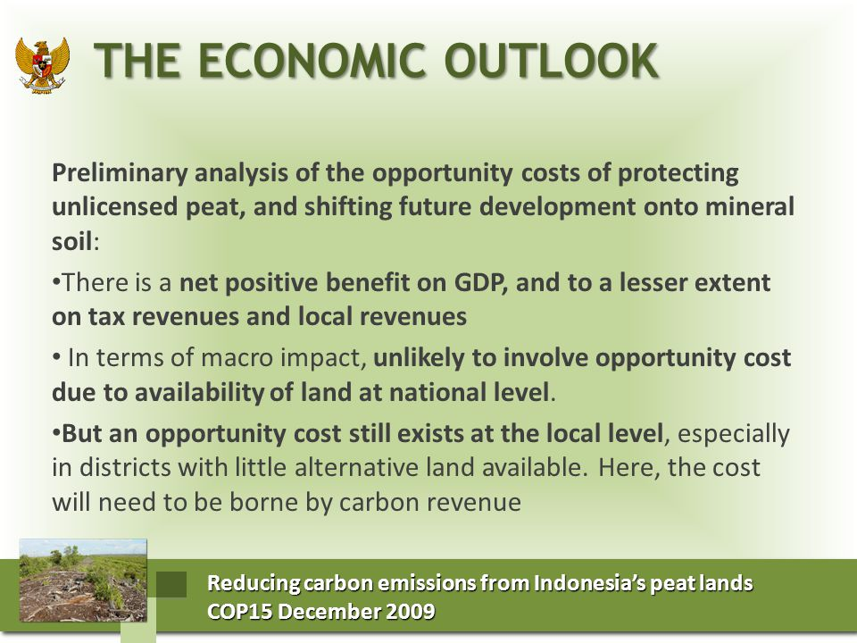 Reducing carbon emissions from Indonesia's peat lands COP15 December 2009 COP15 December 2009 Reducing carbon emissions from Indonesia's peat lands COP15 December 2009 COP15 December 2009 NET POSITIVE BENEFIT OF REVISING LAND ALLOCATION, PERMITS NET POSITIVE BENEFIT OF REVISING LAND ALLOCATION, PERMITS