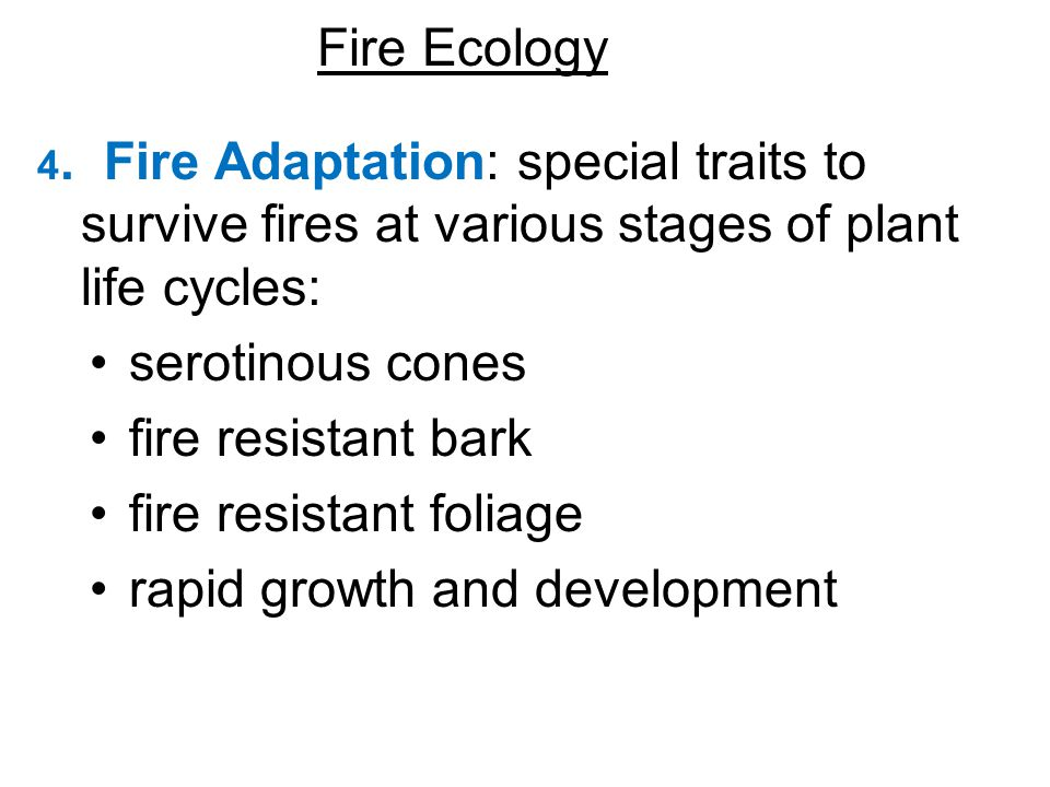 4. Fire Adaptation: special traits to survive fires at various stages of plant life cycles: serotinous cones fire resistant bark fire resistant foliag