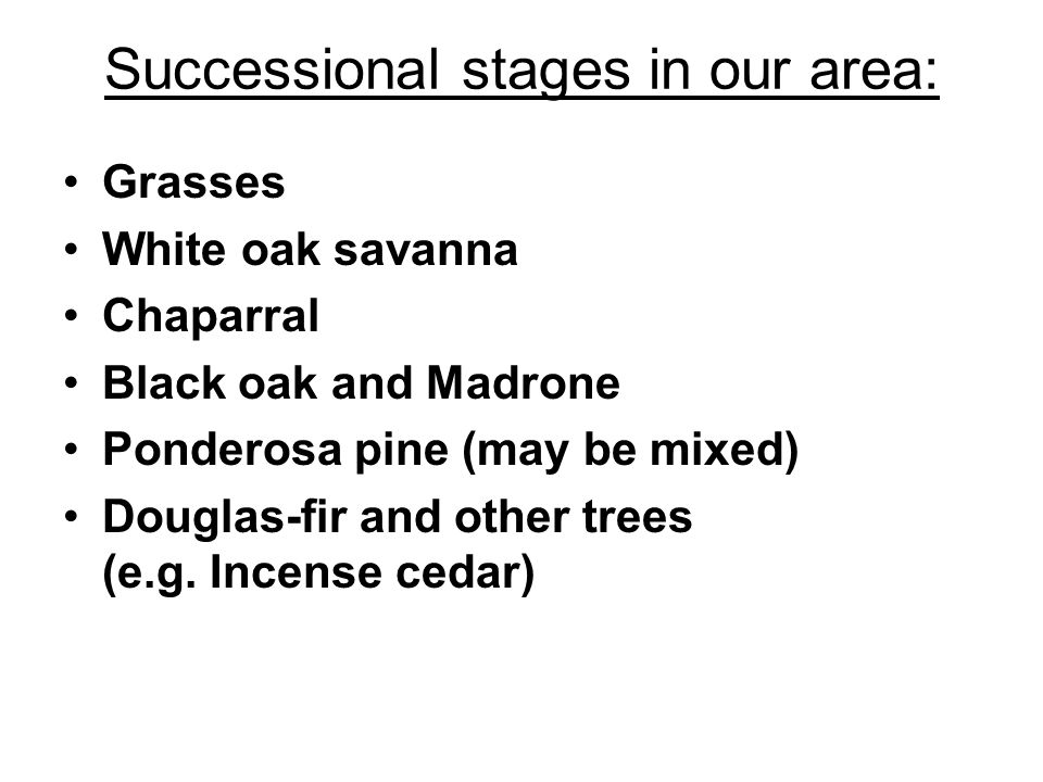 Successional stages in our area: Grasses White oak savanna Chaparral Black oak and Madrone Ponderosa pine (may be mixed) Douglas-fir and other trees (