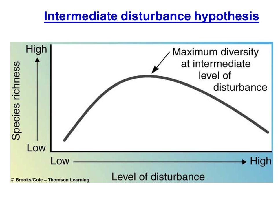 Intermediate disturbance hypothesis