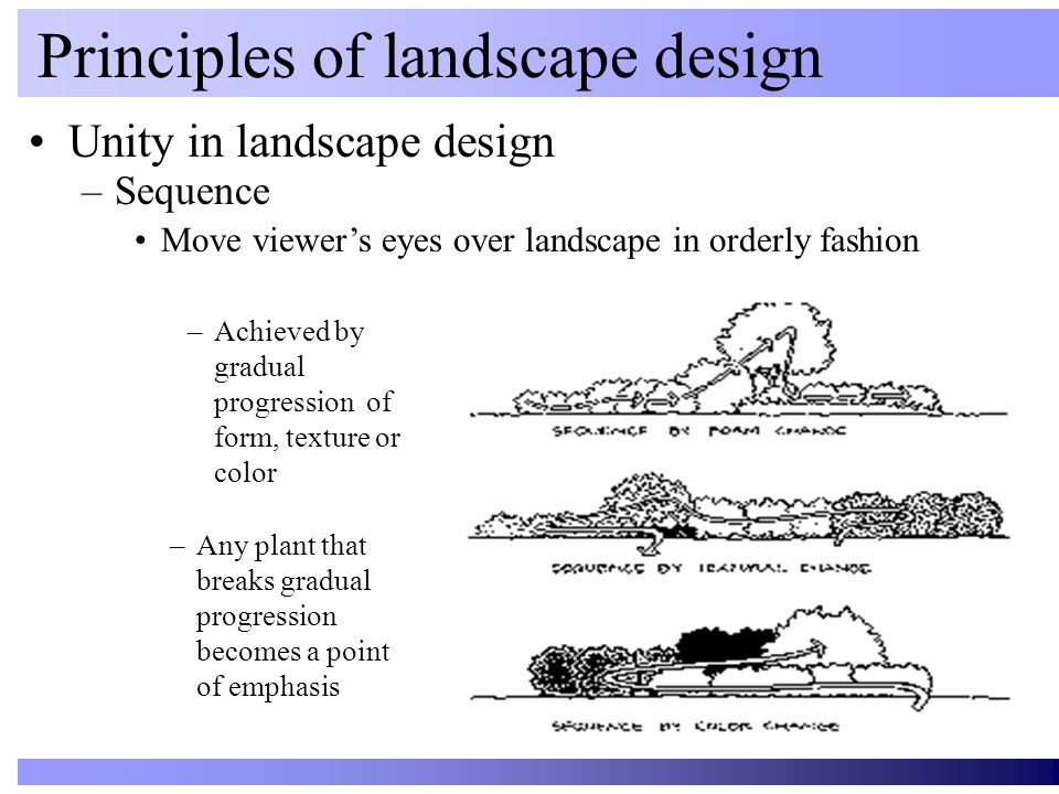 Unity in landscape design Principles of landscape design –Sequence Move viewer's eyes over landscape in orderly fashion –Achieved by gradual progressi