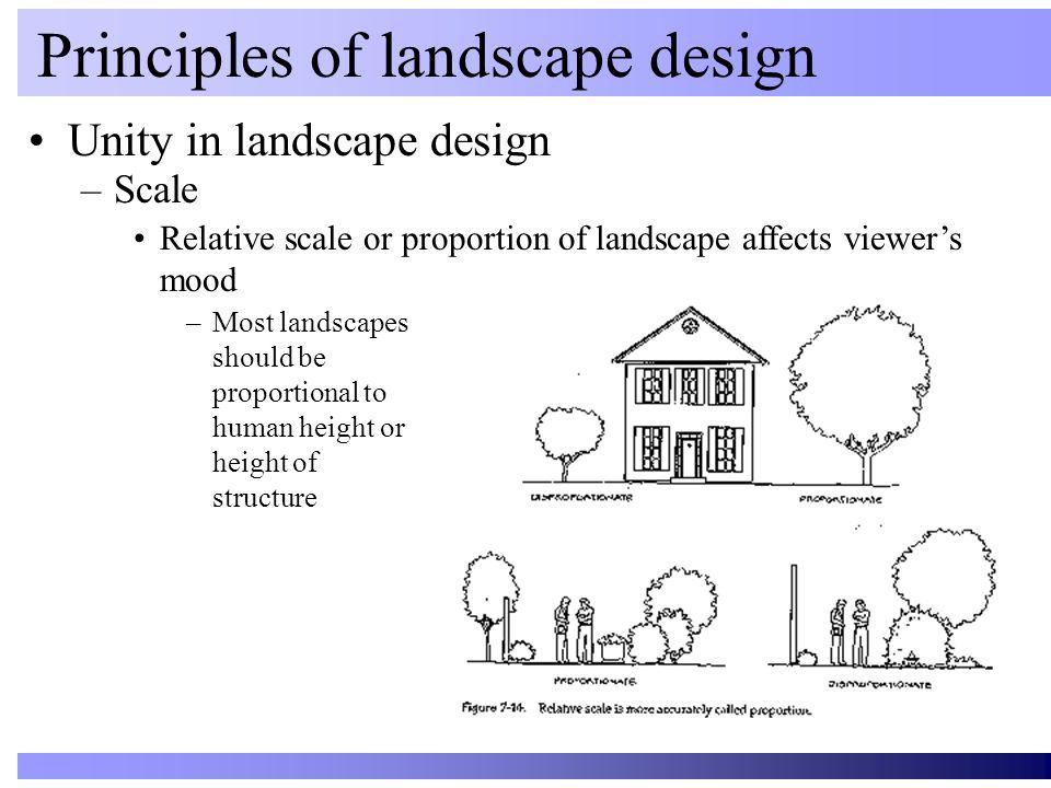 Unity in landscape design Principles of landscape design –Scale Relative scale or proportion of landscape affects viewer's mood –Most landscapes shoul
