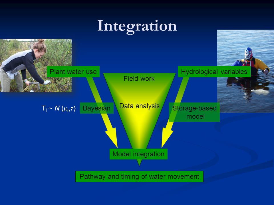 Integration Field work Data analysis Model integration Bayesian Plant water useHydrological variables Pathway and timing of water movement T i ~ N (  i,  ) Storage-based model